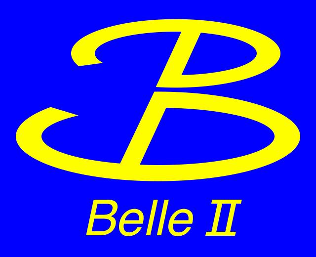 [Belle II]