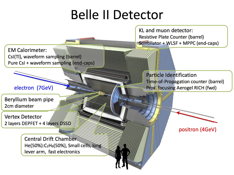 [Belle II Detector]